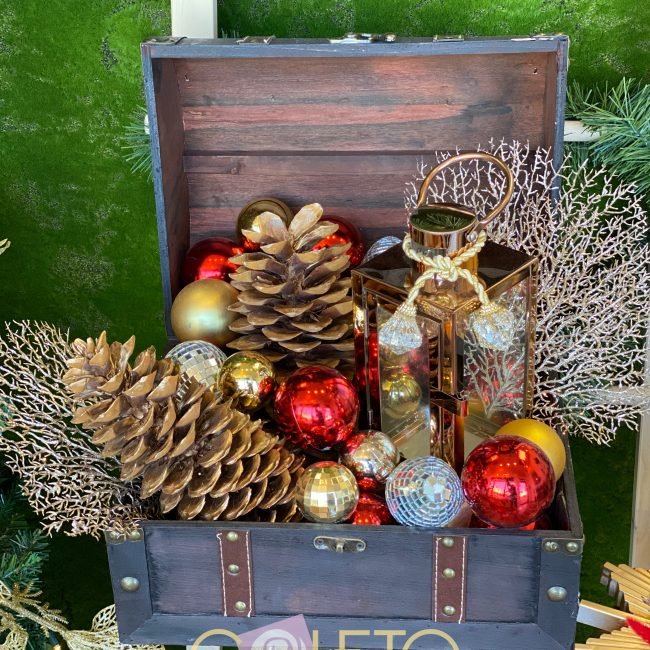 Christmas 2021 flowers and designer elements Art and Flowers
