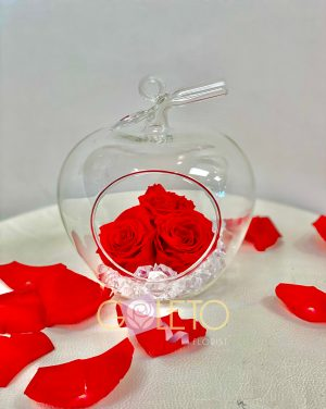 Long lasting Red Rose